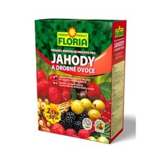 FLORIA OM JAHODY 2.5kg AGRO CS 243